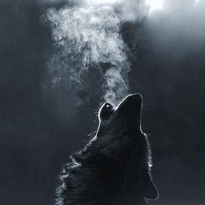 wolf_breathing_300